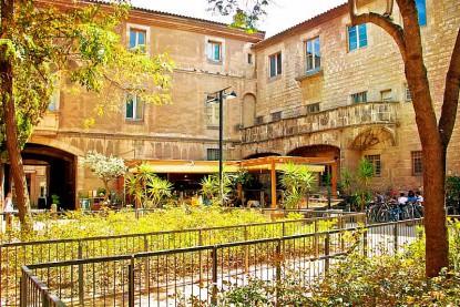 El jardi el oasis bar del raval in and out barcelona for Bar jardin barcelona